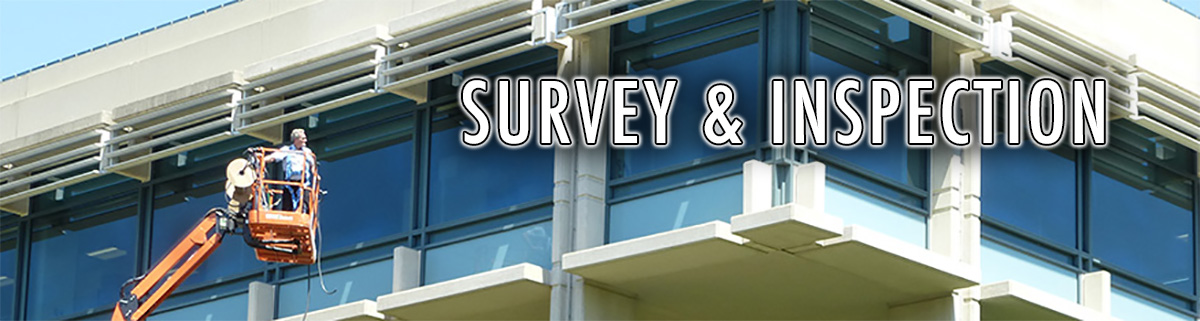 Survey and Inspection